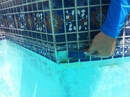 Pool Cleaning Services ♒ Scottsdale Precision Aquatics Inc